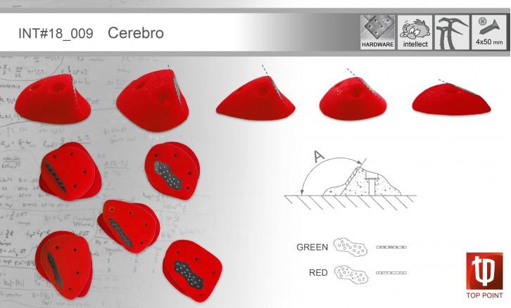 I009 Cerebro